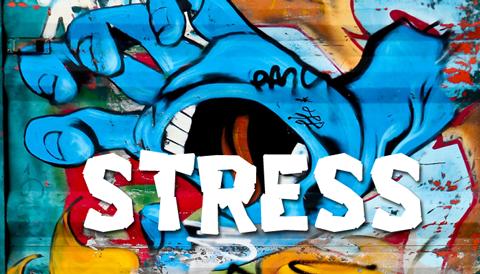 Stress Survey Stress Management Mary Miscisin Ed Redard